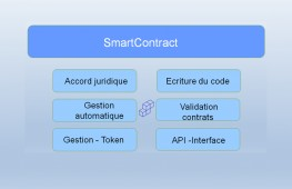 Contract_S